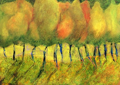 Anderson Hill Grove: 2011<br> Acrylic<br>12 x 16