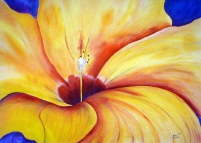Hibiscus<br>Oil<br>36 x 48