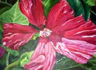 Hibiscus<br>Oil<br>11 x 14